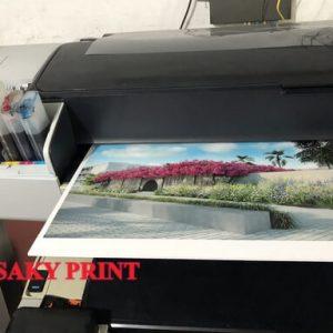 In màu trên máy in phun