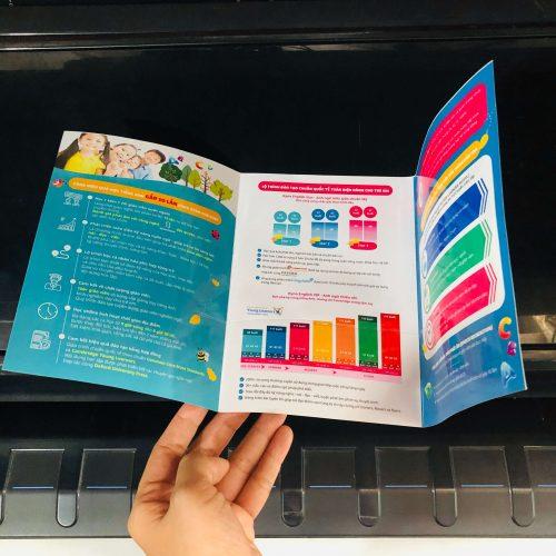 In tờ rơi brochure gập 3 cán màng bóng