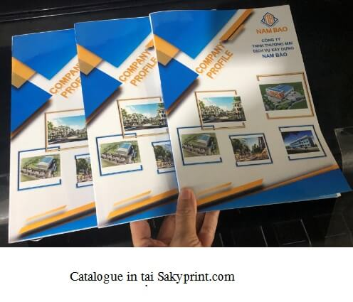 in catalogue giá rẻ HCM
